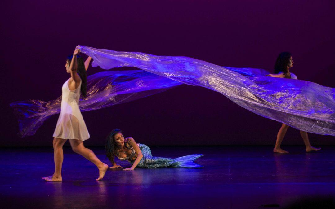 Diferentes espectáculos de danza teatralizados y producciones